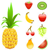 Fruchtset Lizenzfreie Stockfotos