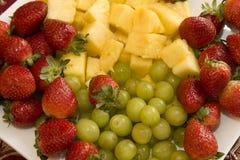Fruchttellersegment Stockfotos