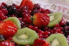 Fruchttorte Lizenzfreies Stockbild