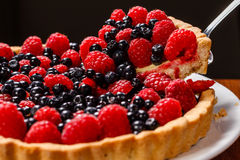 Fruchttortentörtchen Lizenzfreies Stockbild