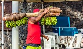 Fruchtträger in Tahiti stockfoto