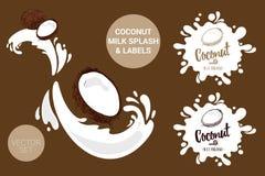 Fruchtvektor-Paketsatz Karikaturkokosnüsse auf Milch spritzt Organische Fruchtaufkleberumbauten lizenzfreie abbildung