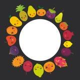 Frui дракона сливы абрикоса известки гранатового дерева хурмы папапайи ананаса tangerine мангустана груши плодоовощ kawaii кругло иллюстрация штока