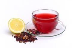 Fruit 05 de thé Photographie stock