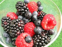 Fruit. Fresh raspberries, blackberries and blue berries in a glass Royalty Free Stock Image