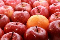 Fruit Photographie stock libre de droits