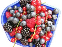 Fruit. Colorful summer fruits in a blue box Stock Photography