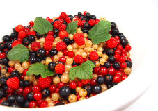 Fruit. Currant and raspberries isolated on white Royalty Free Stock Image