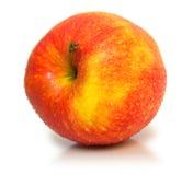 Fruit 13 Stock Image