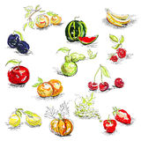 Fruit. Universal template for greeting card, web page, background Stock Photo