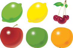 Fruit. The various fruit accurately located on numbers. a vector illustration Stock Photography