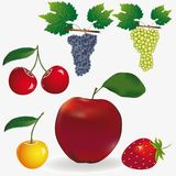 Fruit. Set of fruit icon. Vector illustration Stock Photo