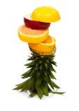 Fruit 2 de tour Image libre de droits