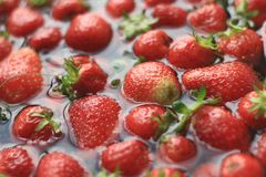 strawberry fruit Royalty Free Stock Image