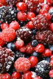 Fruit. Blueberry, strawberry, raspberry and blackberry Stock Image