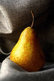 fruit Photo stock