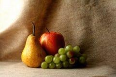 Free Fruit Stock Images - 42686974