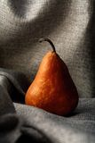 fruit Photo libre de droits