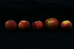 Fruit. Four peaches and an apple in a row against black background Stock Image