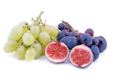 Free Fruit Stock Photos - 6396903