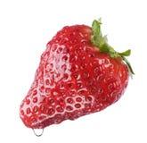 Fruit. Fresh wet strawberry fruit isolated on white Stock Photo
