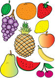 Fruit. Set from different tasty fruit Stock Images