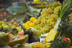 Fruit abundance Royalty Free Stock Photography