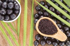 Fruit and acai powder - Euterpe oleracea Stock Photos