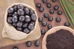 Fruit and acai powder - Euterpe oleracea Stock Photography