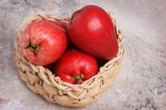 Fruit Acmella oleracea (jambu, toothache plant, paracress, elect Royalty Free Stock Images