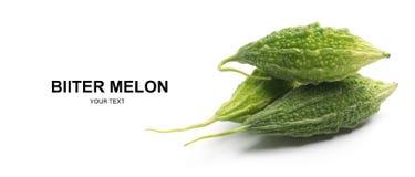 fruit amer de courge de courge amère amère de melon d'isolement Photographie stock