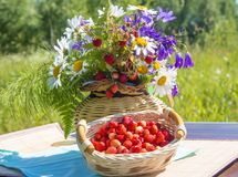 Free Fruit And Flower Bright Basket Royalty Free Stock Photography - 119067607