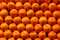 Free Fruit And Vegetables Stock Image - 883191