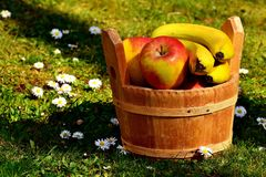 Fruit, Apple, Local Food, Produce royalty free stock images