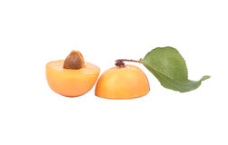 Fruit apricot Royalty Free Stock Photo
