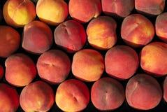 Fruit, apricot, peach Stock Photos