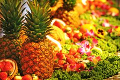Fruit arrangement Stock Photo