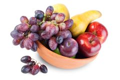 Fruit arrangement in bowl stock image