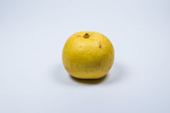 Fruit asiatique jaune de poire sur le fond blanc Image libre de droits