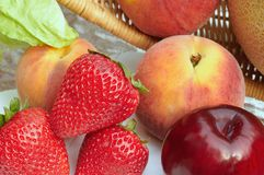 Fruit assortment Stock Photography