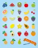 Fruit Assortment Sticker Icon Vector Set Stock Photography