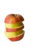 Fruit. Autumn. Harvesting. Discounts. Stock Image