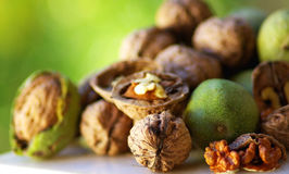 Fruit of Autumn: walnuts. Royalty Free Stock Images