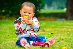 Fruit and baby growth Royalty Free Stock Photos