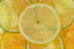 Fruit background. Multiple fruit background with lemon, oranges and limes Stock Photography