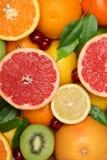 Fruit Background stock image