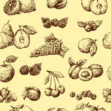 Fruit background Royalty Free Stock Image