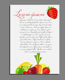 Fruit background blank page vector illustration Stock Photos