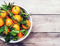 Fruit background - Bunch of fresh tangerines oranges on market Stock Photography