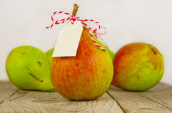 Fruit background. Fresh organic pears on old wood. Pear autumn h Royalty Free Stock Image